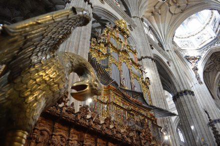 Órgão de tubos na Catedral de Salamanca - diogo pereira