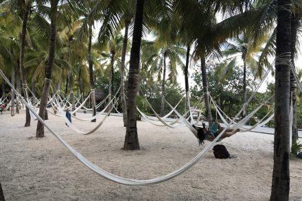 camas de redes suportadas por palmeiras no México