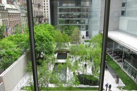 Jardim interior do MOMA de Nova Iorque fotografado a parir de um piso superior através de uma janela num dia de sol. Foto de Velvet
