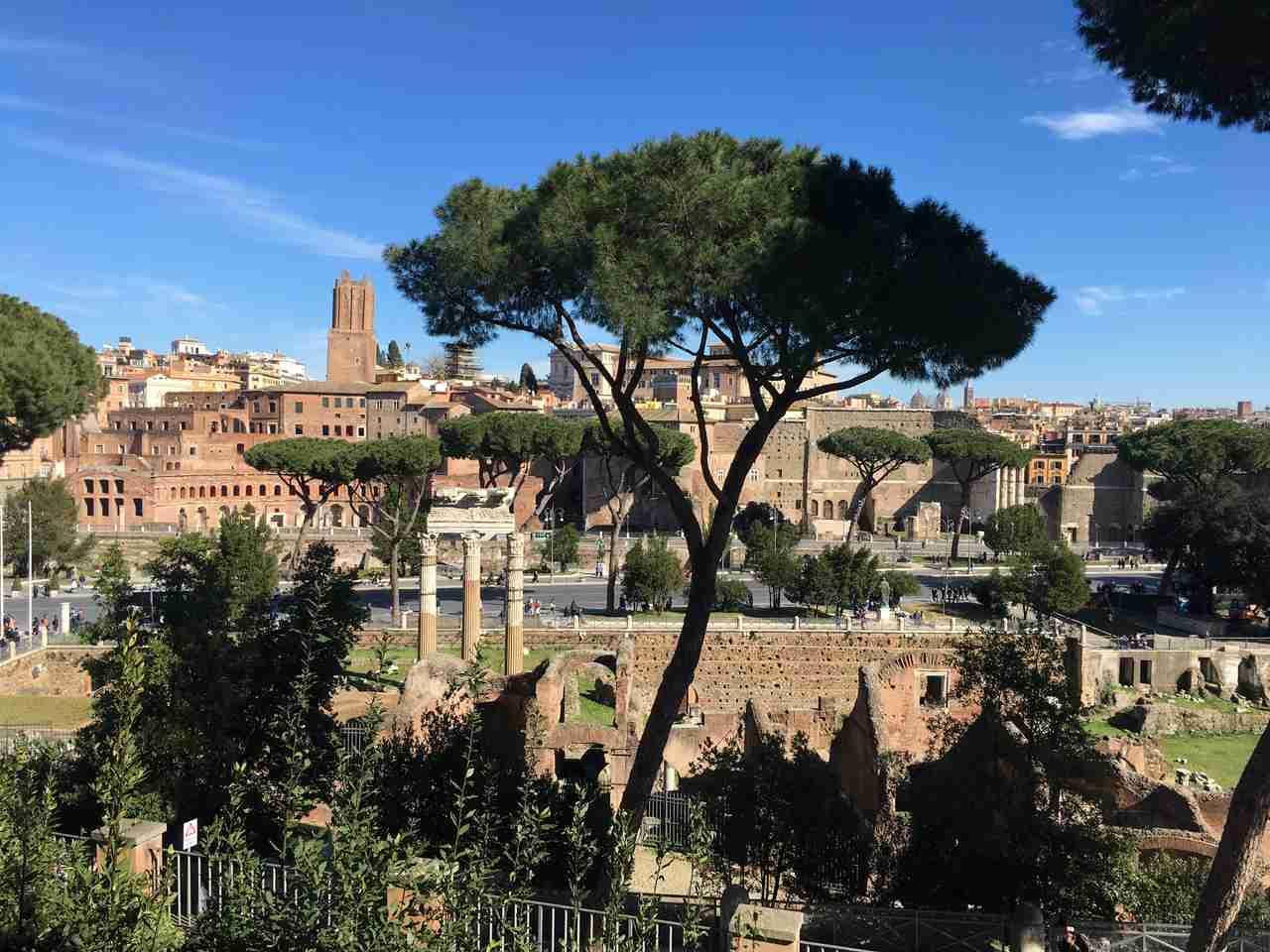 Fórum Romano em Roma. Foto de Inês Marques