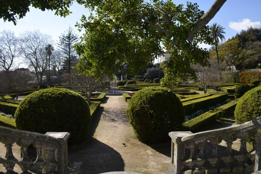 Jardim Botânico da ajuda, em Lisboa. Foto de Cláudia Paiva