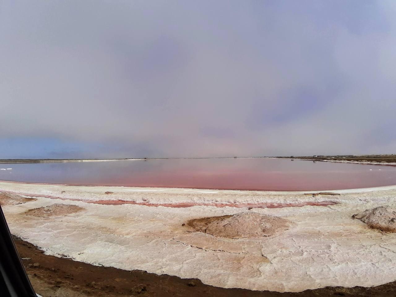 Lago de sal cor de rosa na Namíbia. Foto de Rita Cerveira Martins