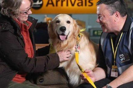 Aeroporto de Southampton usa cães para tranquilizar passageiros 1. foto de Therapy Dogs Nationwide