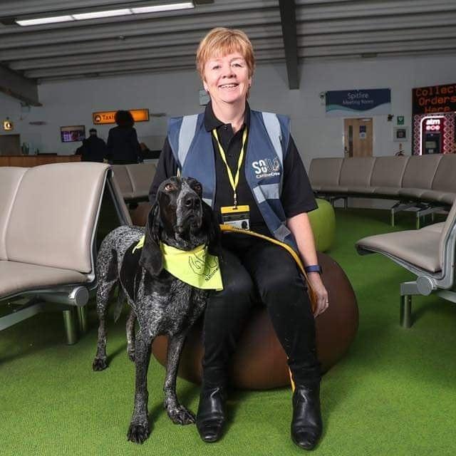 Aeroporto de Southampton usa cães para tranquilizar passageiros 2. foto de Therapy Dogs Nationwide
