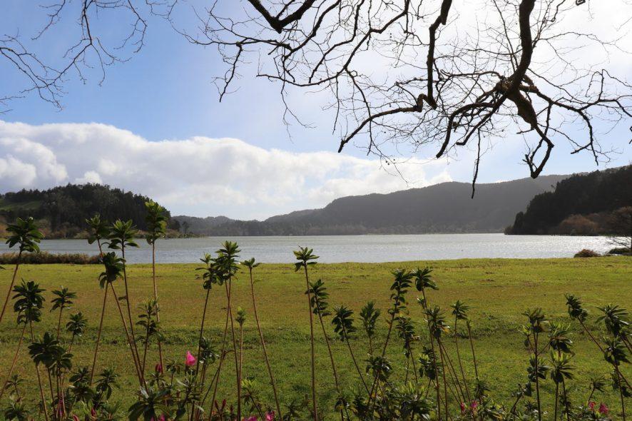 Sao Miguel nos Açores. Foto Carla Ferreira