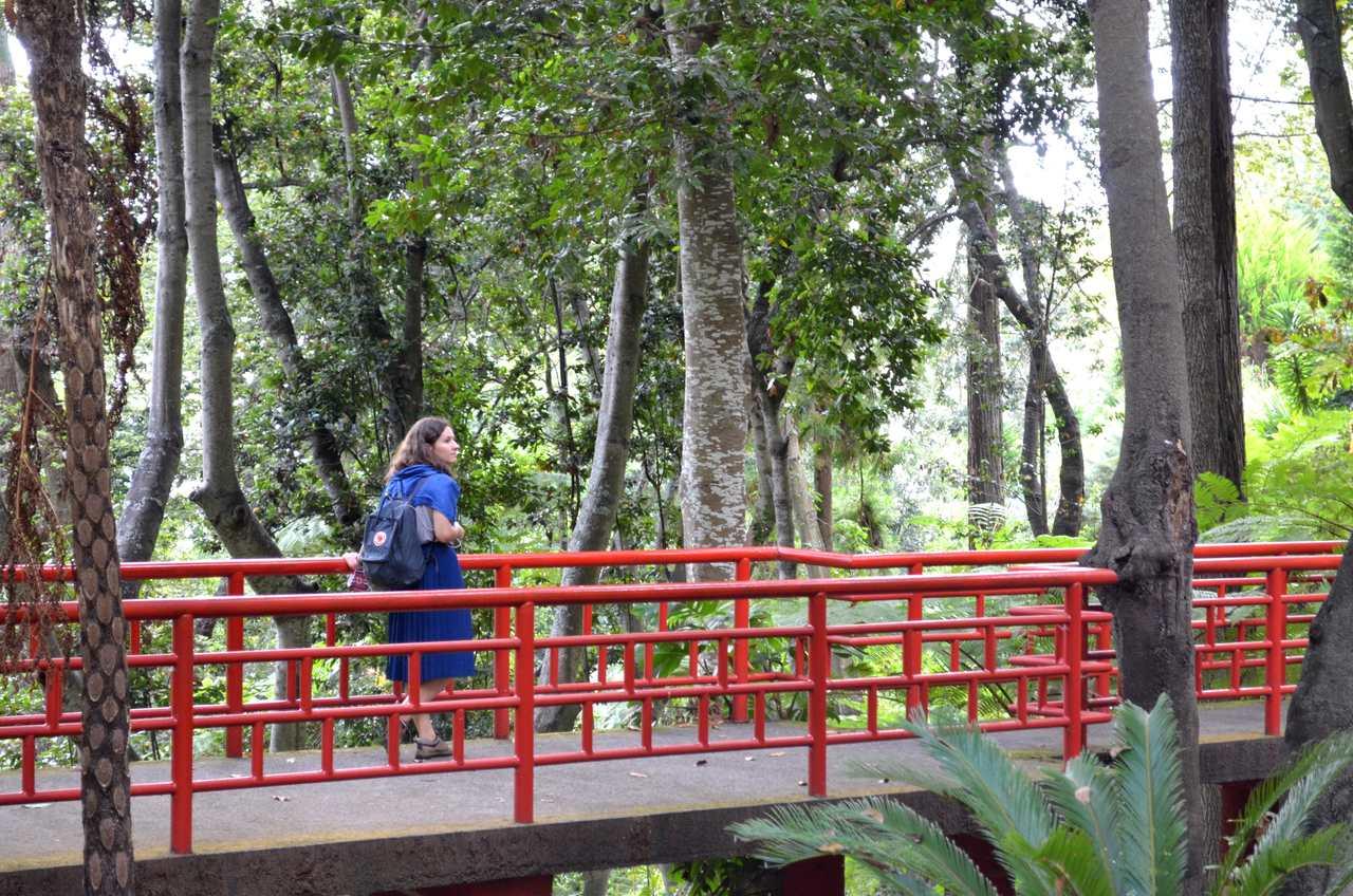 Jardim Tropical Monte Palace na Madeira