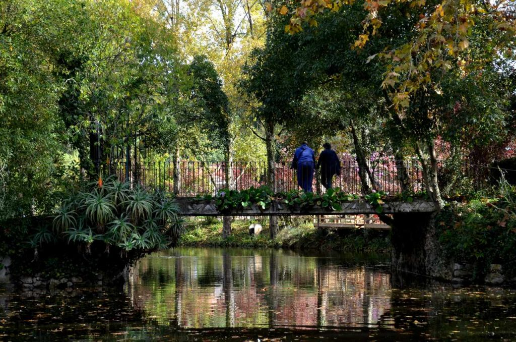 Ponte no Parque D. Carlos I nas Caldas da Rainha