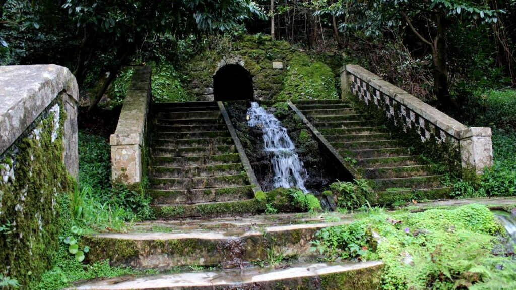 Circuito de água perto de uma escadaria na Mata do Bussaco