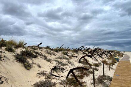 Cemitério de Âncoras na Praia do Barril de Tavira