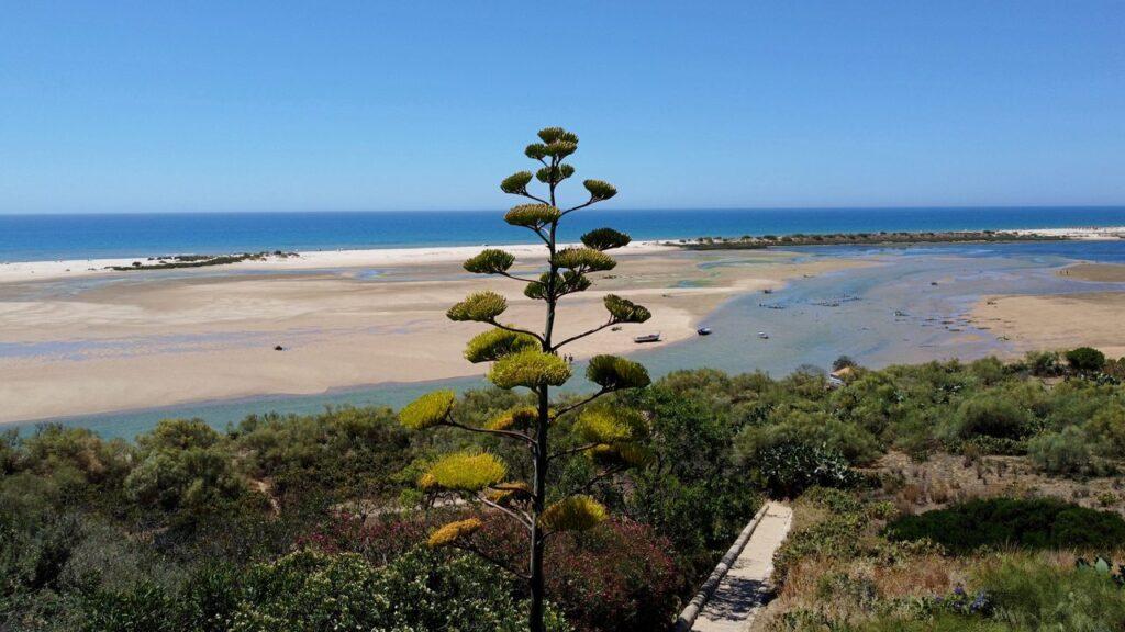 Vista aérea da ria formosa e da praia de Cacela Velha