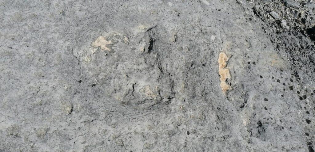Pegadas-visita-ao-Monumento-Nacional-das-Pegadas-de-Dinossáurios-em-Ourém-